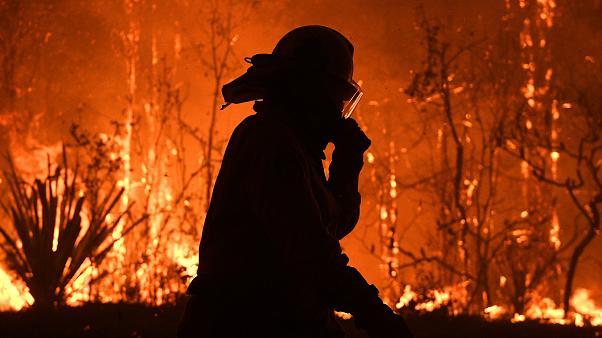 Question et réponse du Ministre Goffin sur le soutien aux pompiers australiens
